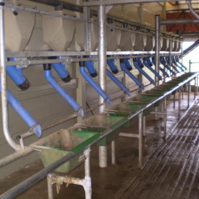 Facultad de Cs. Agrarias UNR , Zavalla (Santa Fe)