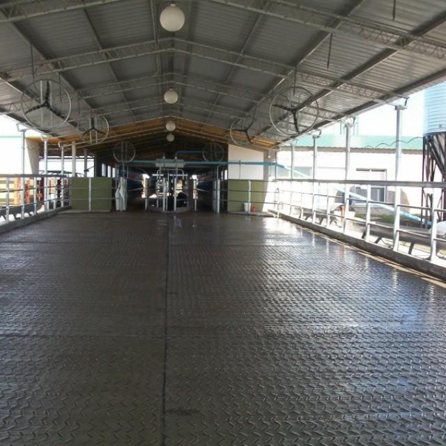 Granja 3 Arroyos - Est Los Guazunchos - Proyecto y Conducción Técnica completa- Santa Elena (ER)