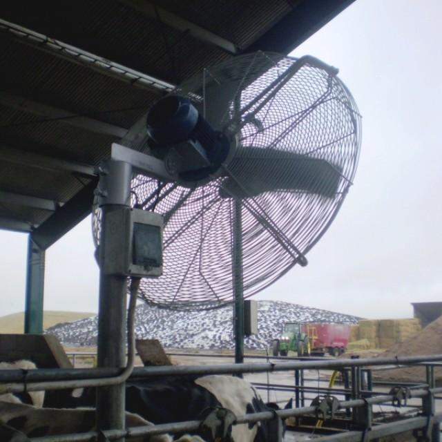 Sistemas de asperjado y ventilación en corrales de espera