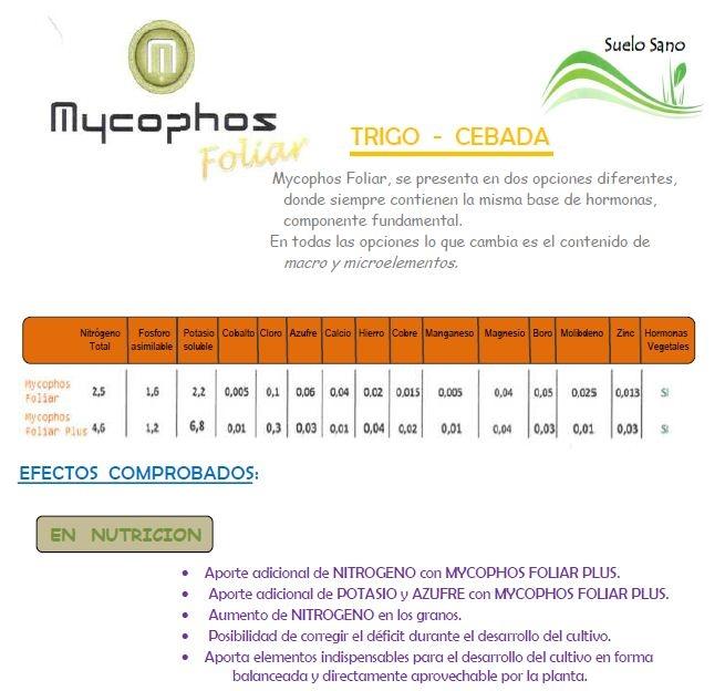 MYCOPHOS FOLIAR TRIGO CEBADA, SUELO SANO, maria teresa