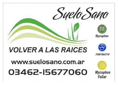 RECUPERACION DE SUELOS 2, SUELO SANO, maria teresa
