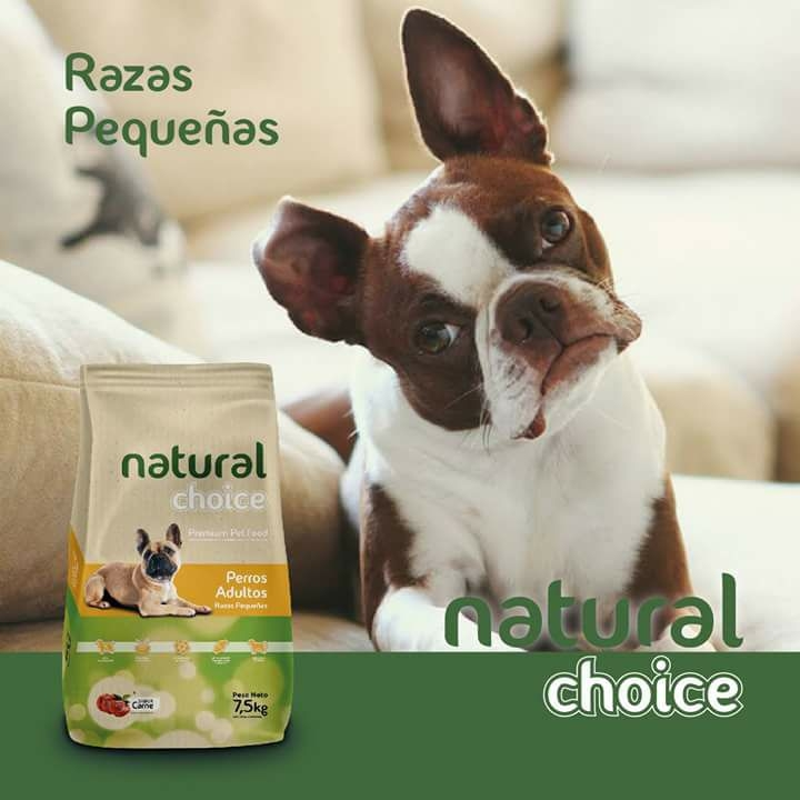 NATURAL CHOICE RAZAS PEQUEÑAS, DELKO ALIMENTOS S.R.L, venado tuerto