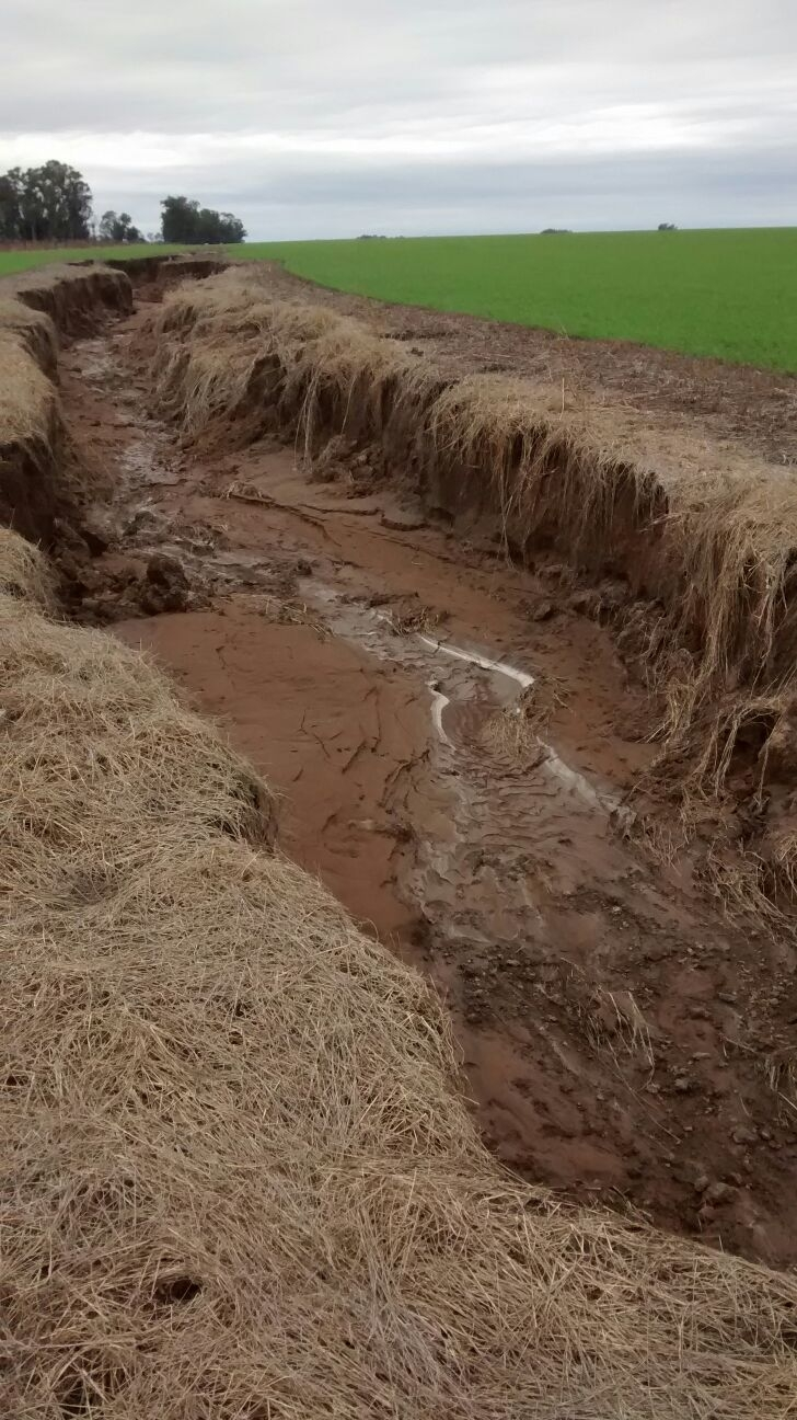Manejo y recuperacion de tierras, ESTUDIO AGRONOMICO, venado tuerto
