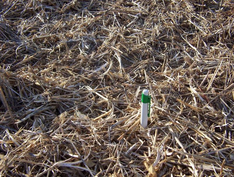 Relevamiento y productividad de suelos, ESTUDIO AGRONOMICO, venado tuerto